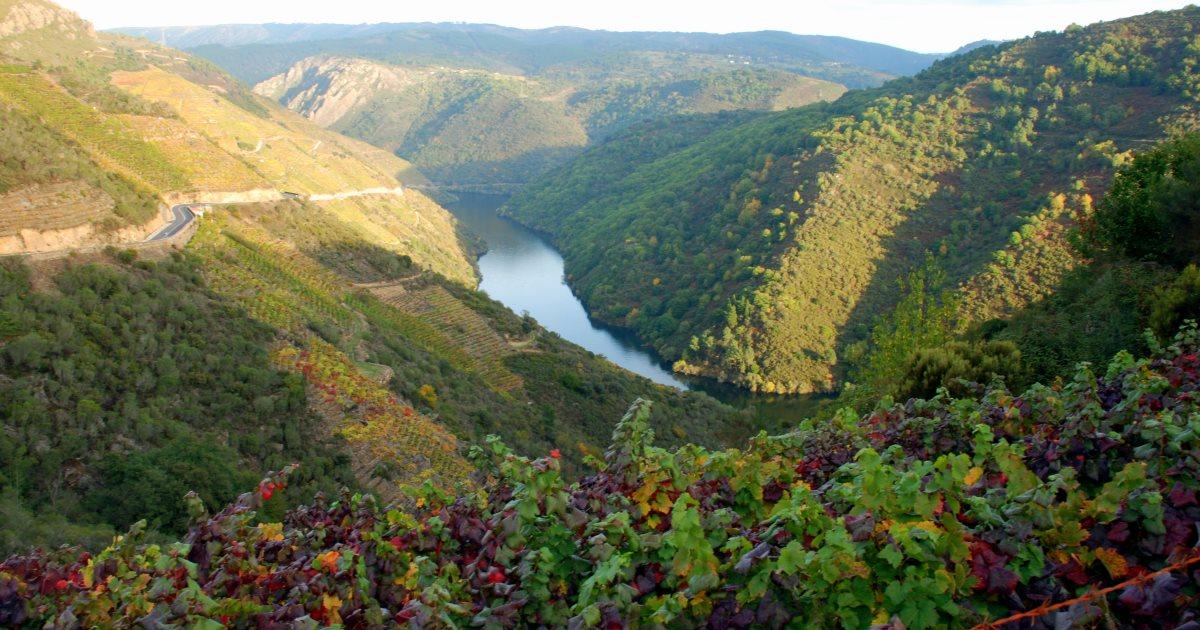 媲美勃根地的西班牙 Galicia 風土之旅 品酒會